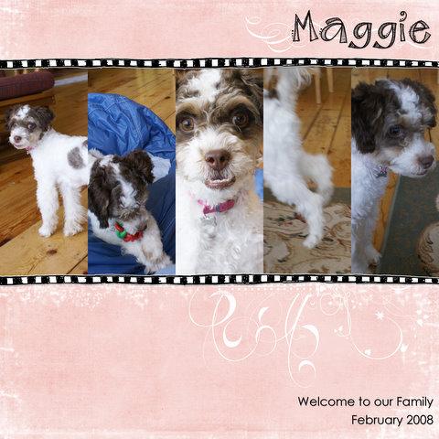 maggie-pf-challenge-1.jpg